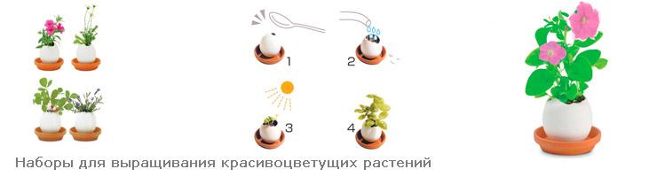 Набор для выращивания